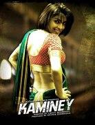 Негодяй (Kaminey)