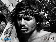 Pankh