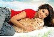 Шилпа Шетти с котом
